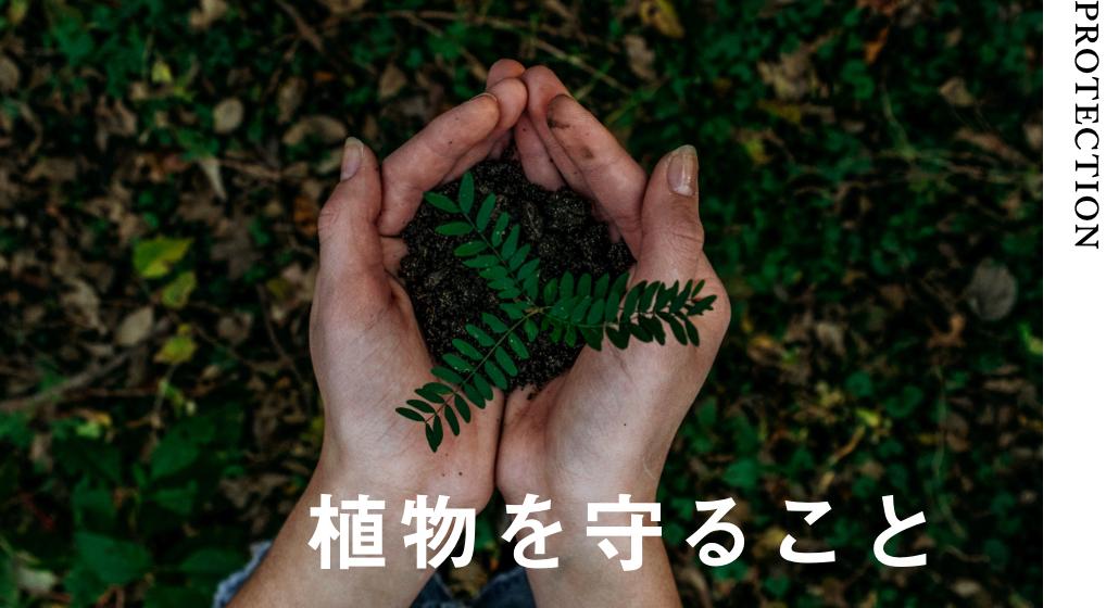 植物を守ること